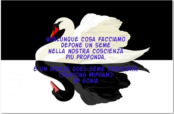 image I peccati di mia moglie 2001 full italian movie